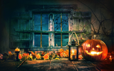 Pumpkin & Lantern Night - Backdrop Shop