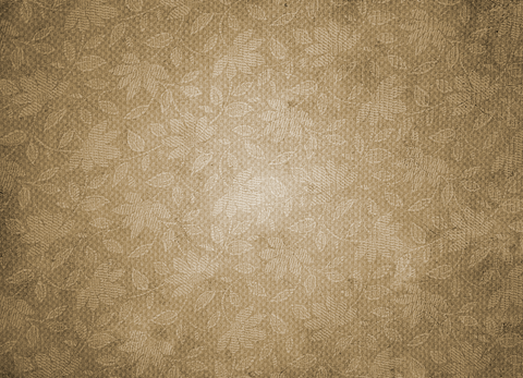 Vintage Pattern On Paper-Brown - Backdrop Shop
