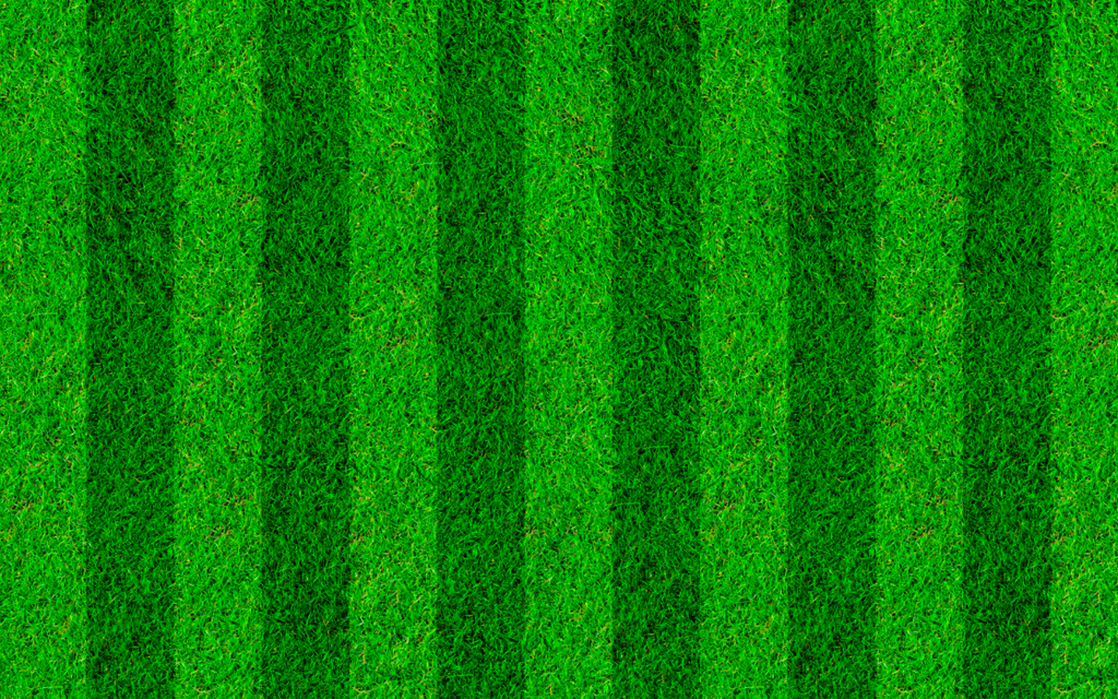 Soccer Field Grass-2 - Backdrop Shop