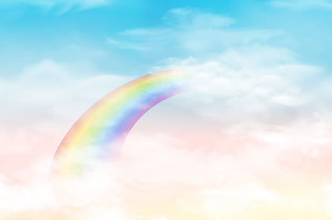 Rainbow In The Colourful Sky - Backdrop Shop