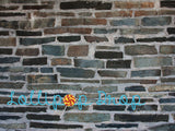 Stone Mosaic - Backdrop Shop