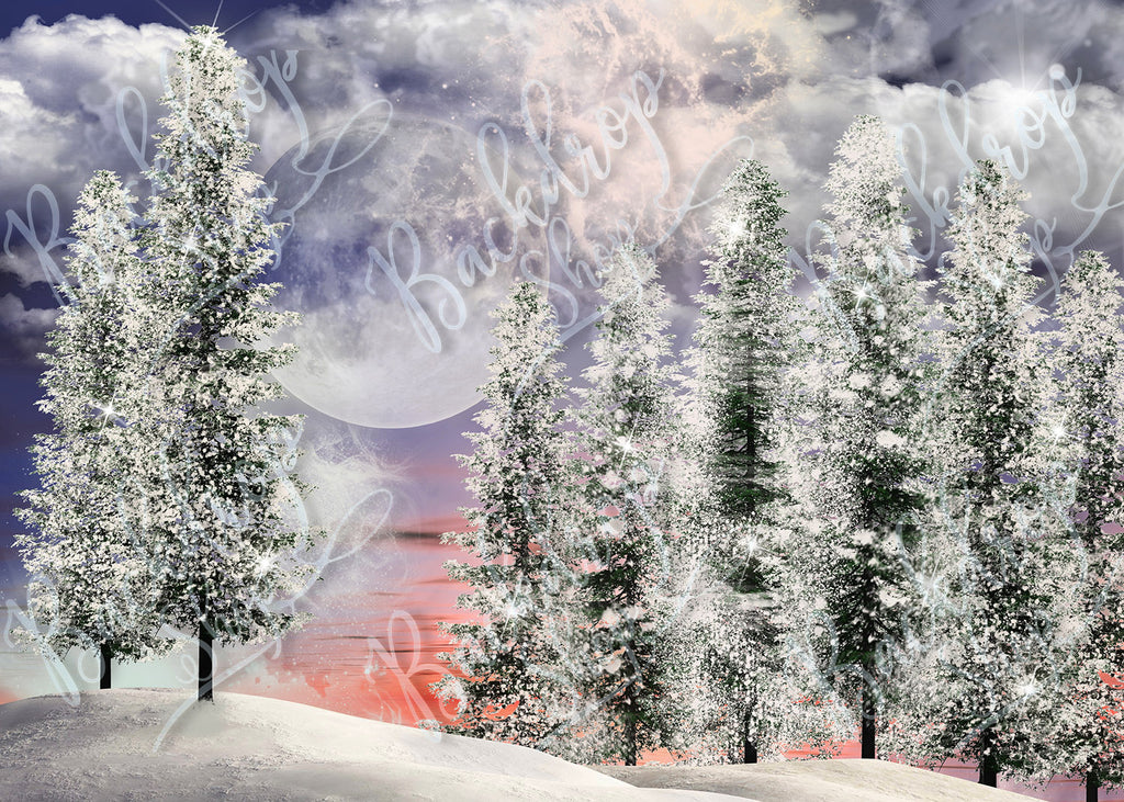 Winter Landscape - Backdrop Shop