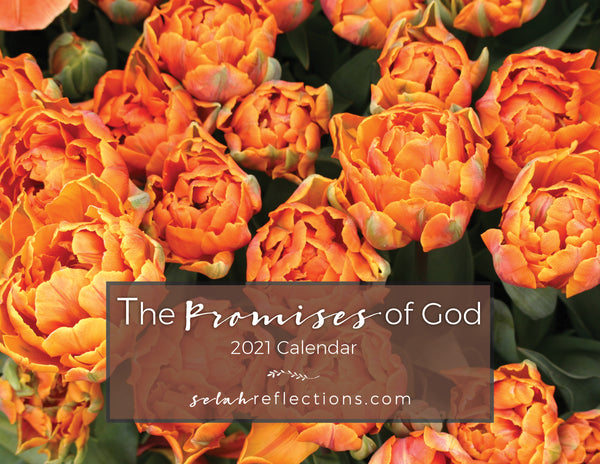 2021 Scripture Wall Calendar - The Promises of God - Photography Wall Calendar