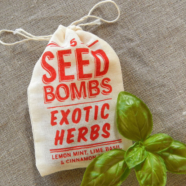 visual lingual seed bombs