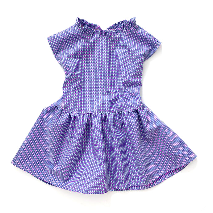 Napoli Dress (blue/pink micro gingham)