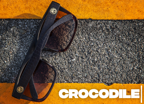 Crocodile sunglasses