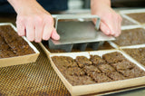 Gluten-Free Recipe Gingerbread – 300g Tray