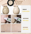 AIR CUSHION BB CREAM