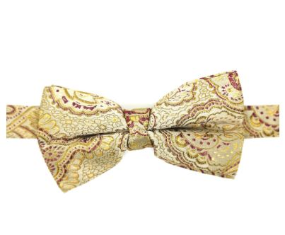 Paisley Tapestry Bowtie- Gold/Burgundy