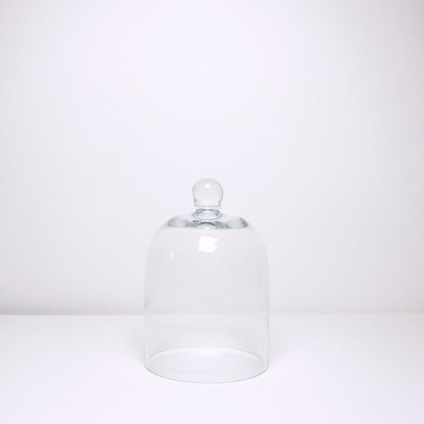 Small glass cloche