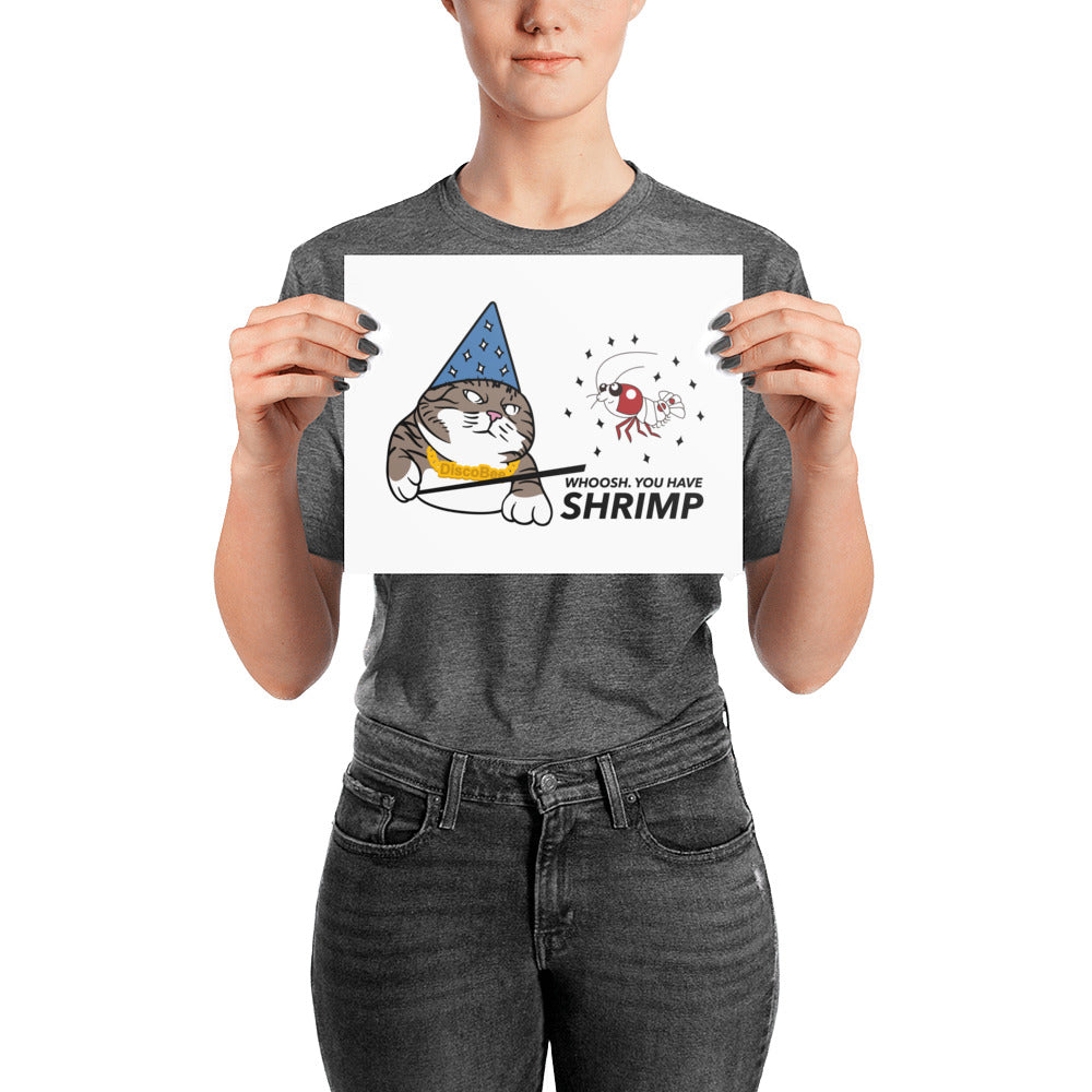Whoosh you have Shrimp! Posters (multiple sizes)