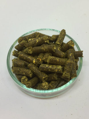 Shrimp Nature Yellow - 30grams