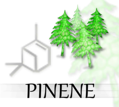terpene tees pinene