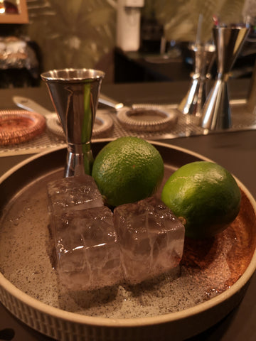 Large 1-inch cocktail / whiskey ice cubes