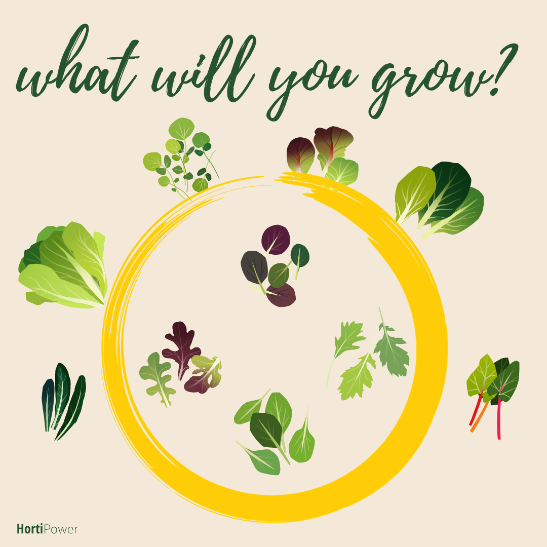 what will you grow?