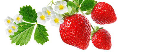 better strawberries with growlight