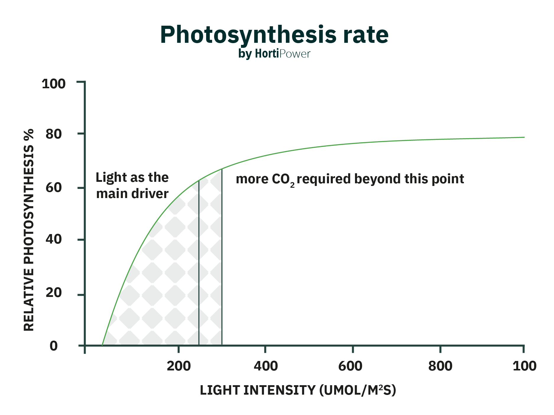 photosynthesis rate