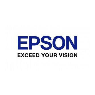 Epson Ink Cartridges C33S020484