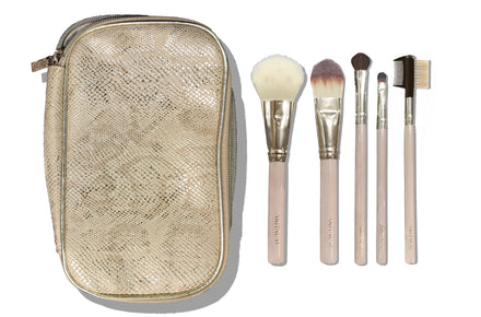 AR Brush Case Set