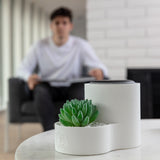 Echo Dot Holder/Google Home Mini Stand