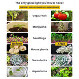 Pure White LED Grow Light Bulb