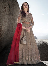 Load image into Gallery viewer, Grey Heavy Embroidered Kalidar Lehenga Style Anarkali Suit