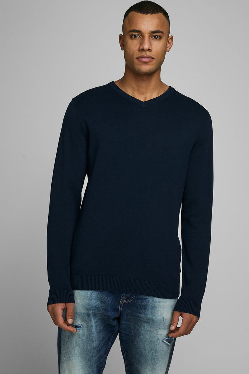 mens basic v-neck knit
