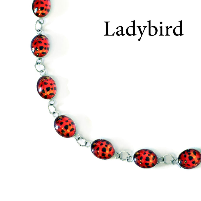 Ladybirds and Gift Sets: New things for Spring!