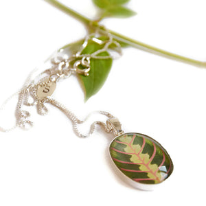 Maranta Leaf Pendant Necklace