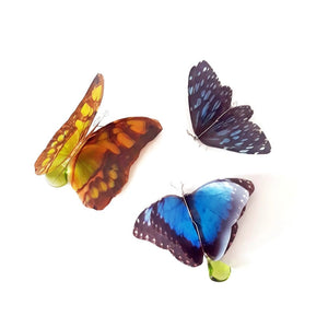 Butterfly Decorations - Set of 3