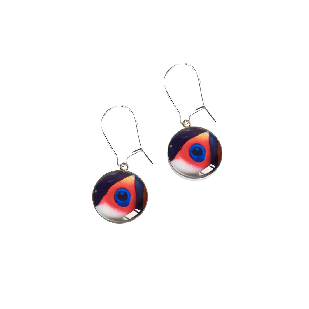Toco Toucan Drop Earrings