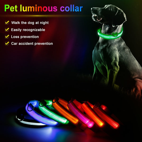 Pet Nylon LED Flashing Fluorescent  Dog Leash Collar - ourfurryfriendshub