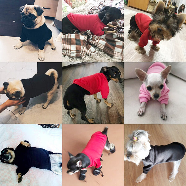 Winter Coat Jacket for Small Dogs Cats - ourfurryfriendshub