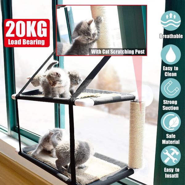 Cat Bed Window Mounted  Suction Cups - ourfurryfriendshub