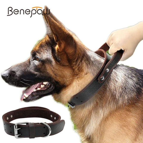 Genuine  Leather Control Handle Collar Pet Training - ourfurryfriendshub