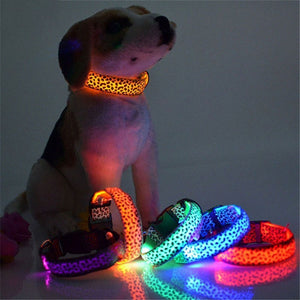 Adjustable LED Light Glow Pet Collar Leopard Nylon Pet Dog Cat Night Safety Luminous Flashing Necklace Glowing Neck Belt XWBE. - ourfurryfriendshub