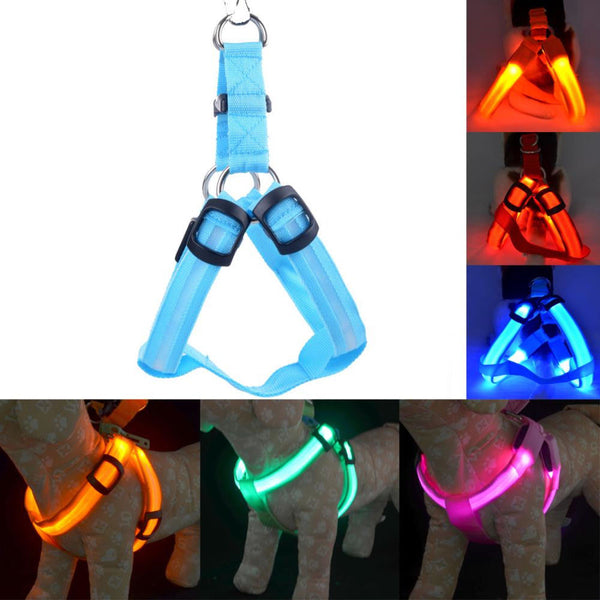 Nylon Pet Dog Cat Harness Safety LED Flashing Light Harness LED Leash Rope Belt Collar Harness Vest for Small Medium Large Dog - ourfurryfriendshub