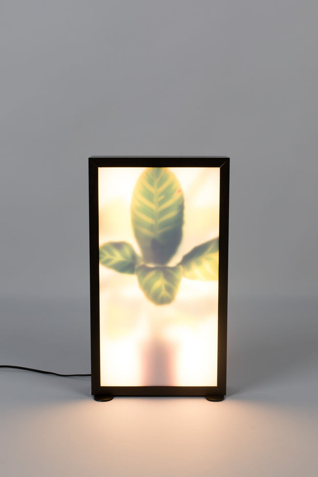 Zuiver Lamp Grow M