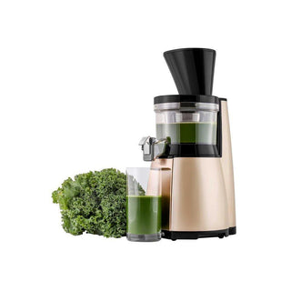 Hurom Juicers Hurom HT Slow Juicer - Sandy Gold JL-Hufford