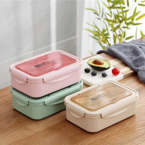 Kids Lunch Box with Dividers