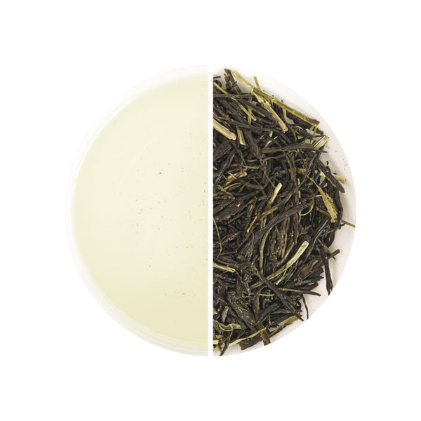 Sencha of the Spring
