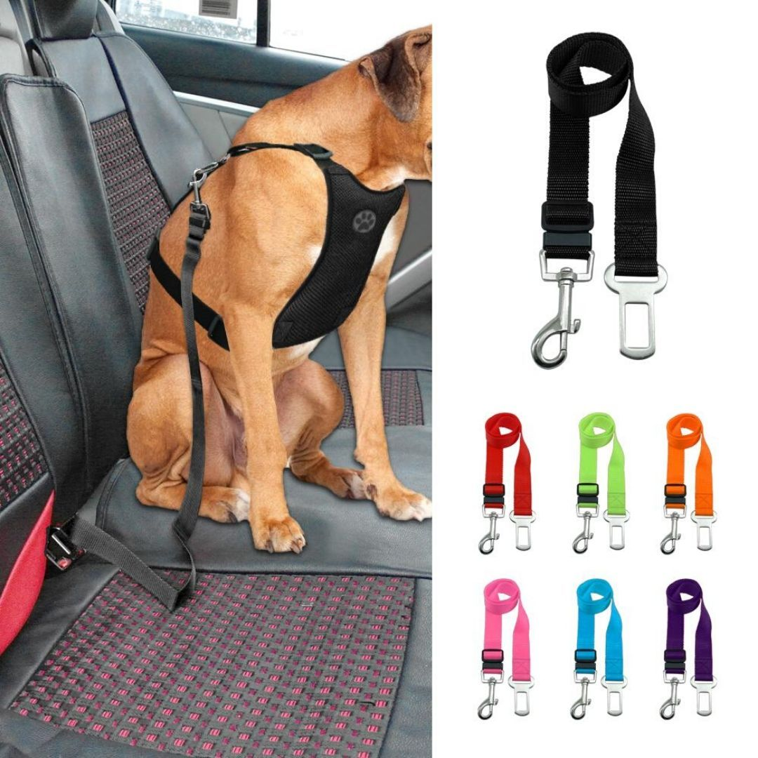 Safety Seat Belt for Dogs - PetBelong