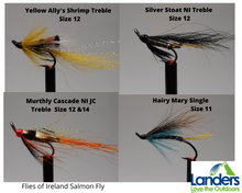 Load image into Gallery viewer, Flies Of Ireland Salmon Fly (1 Fly)