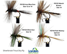 Load image into Gallery viewer, Silverbrook Trout Dry Fly