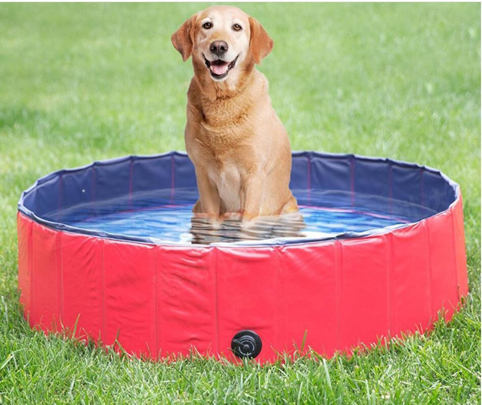 Portable inflatable pool for pets