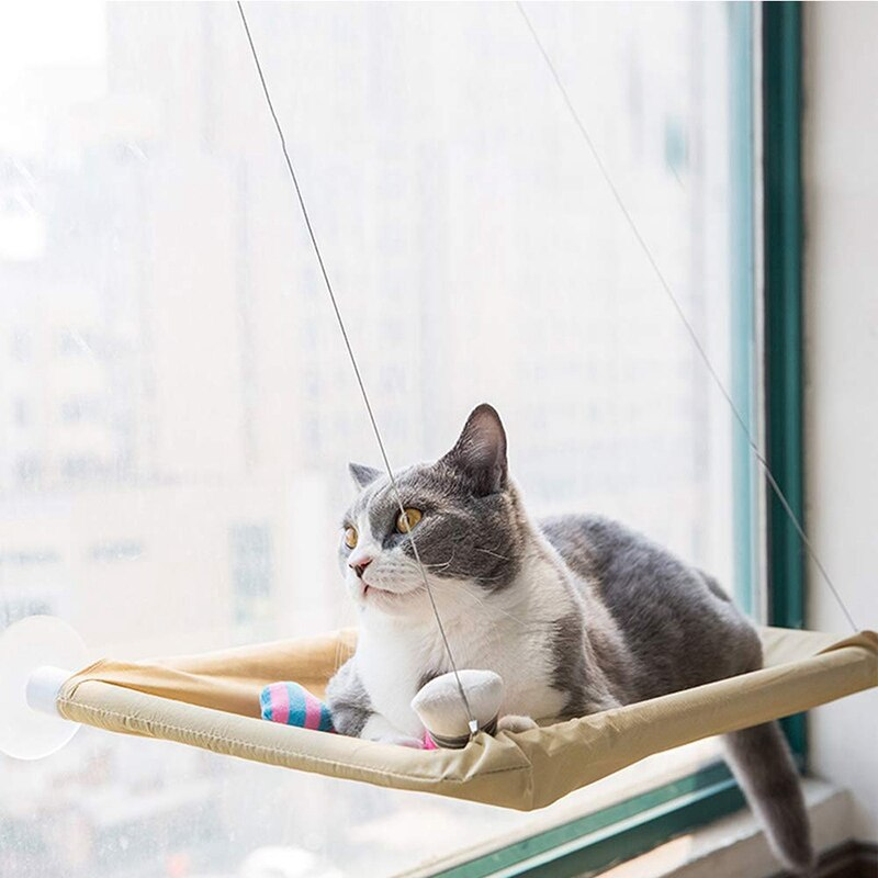 Cats suction cup hammock