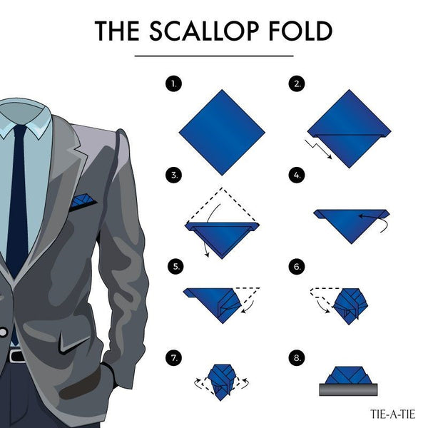 Scallop Fold Infographic