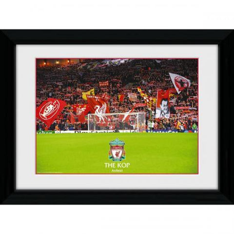 Liverpool FC Picture The Kop 16 x 12