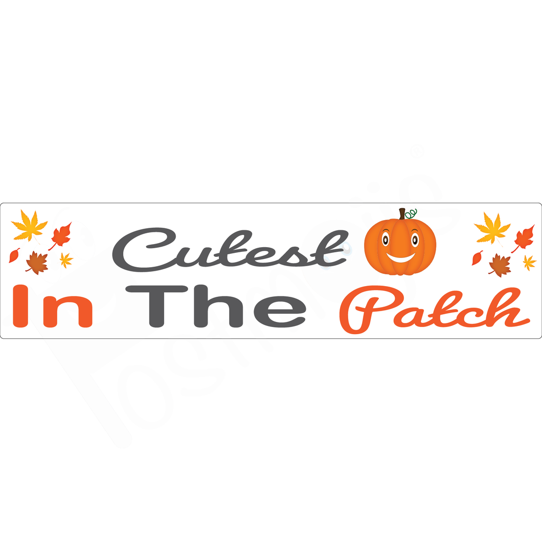 Cutest Pumpkin in The Patch Real Estate Rider Fall Collection