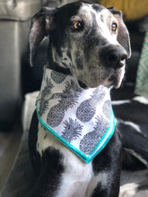 Load image into Gallery viewer, Pineapple Dog Bandana